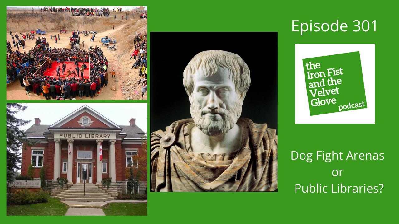 Episode 301 – Dog Fight Arenas or Public Libraries